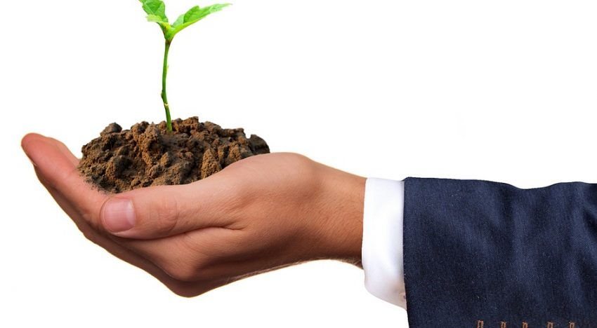 Top 5 Ways in Which Going Green Can Save Your Company Money