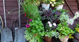 2018 Garden Landscaping Trends