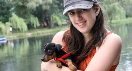 Best Dog Breeds for a Lady