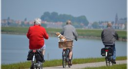 A Changing Your Local Environment: Is Florida a Retiree's Haven?