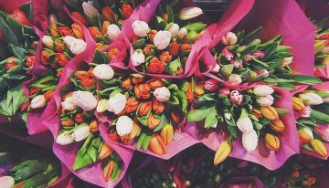The Ultimate Guide To Flowers For Every Occasion