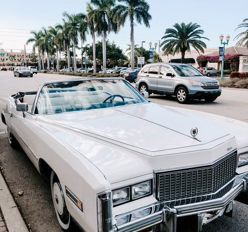 4 Things to Do on Your Miami Trip