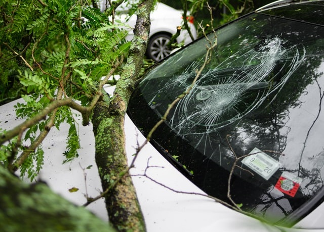 5 Things to Know About Your Car Insurance